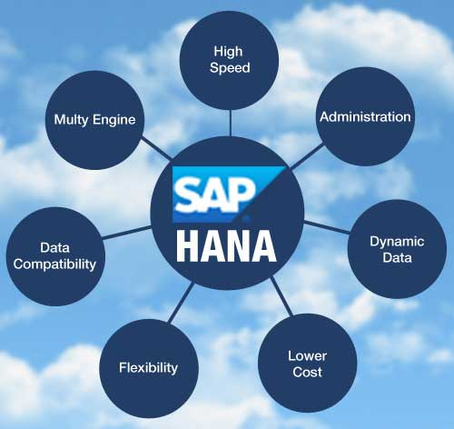 Option to Host SAP HANA Application with best Infrastructure